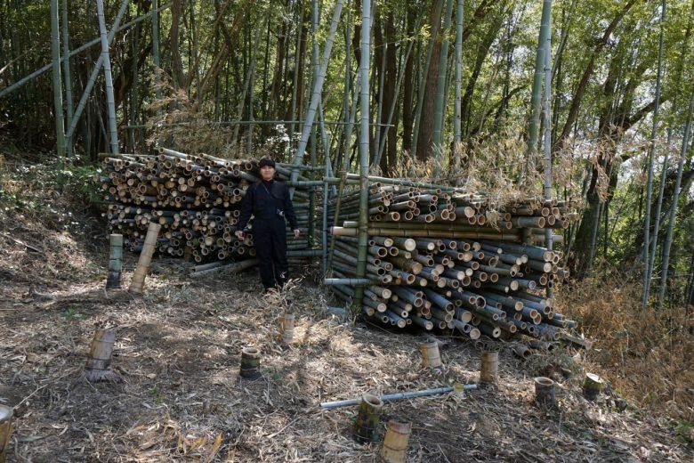 竹の保管庫