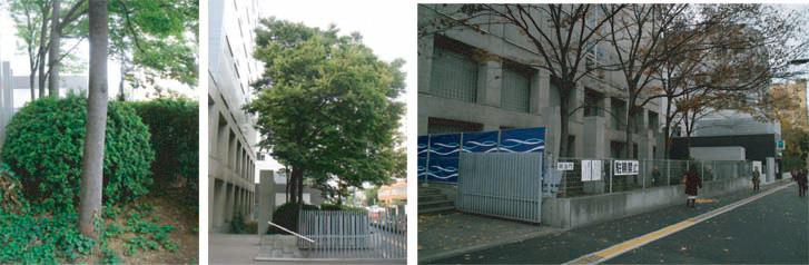 20100119-campus-sa.jpg