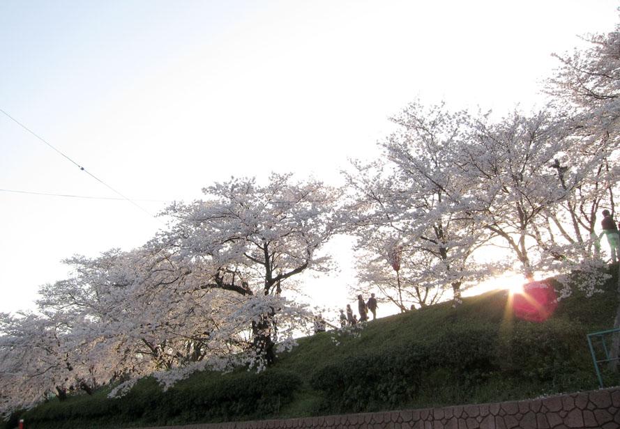 20100406-15_unnan.jpg